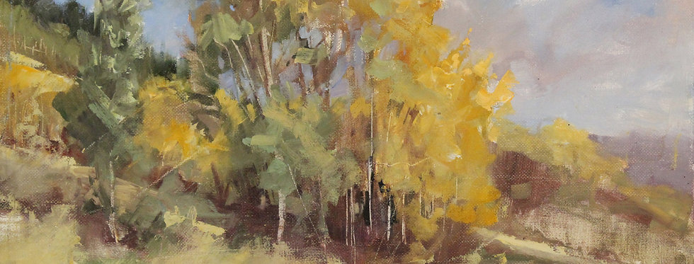 plein air near crested butte