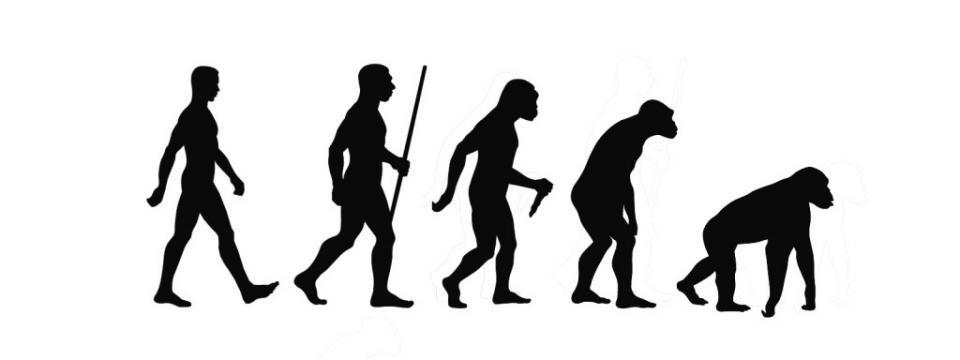 evolution-1024x768 (1).jpg
