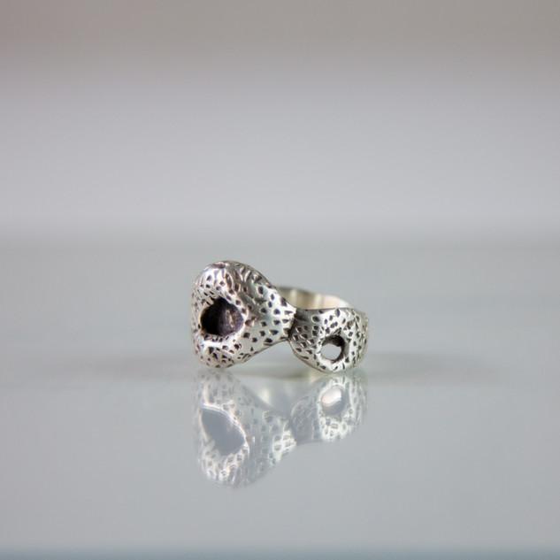 Silver ring series II