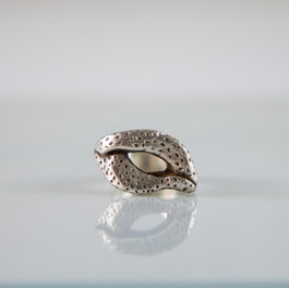 Silver ring series I