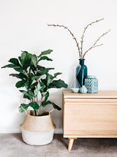 Home Accessories for an Instant Style Update