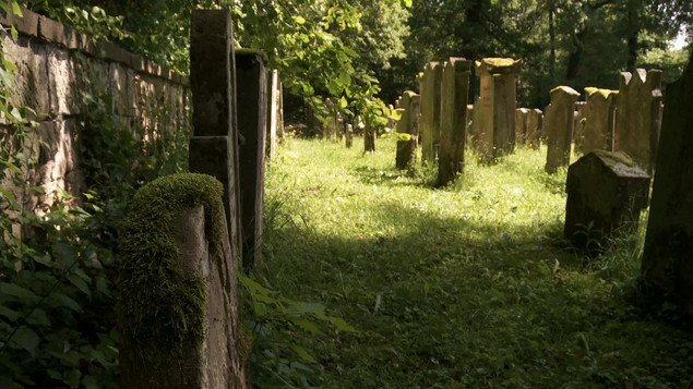 Freudental graveyard.jpeg