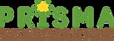 Prisma - logo.png