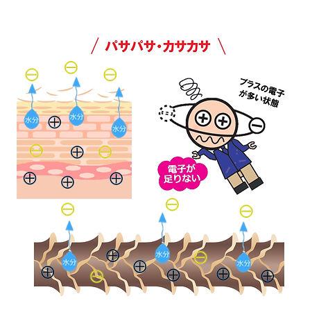 酸化3.jpg