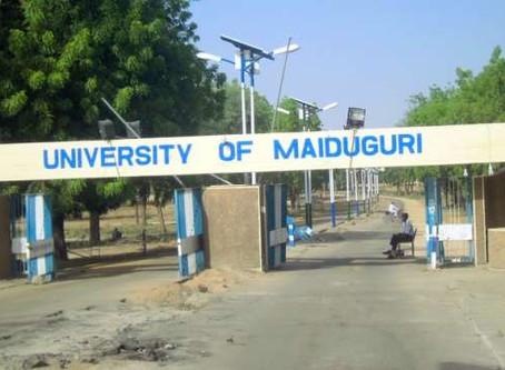 Professor & Child Killed in Two Suicide Attacks in Nigeria's University of Maiduguri