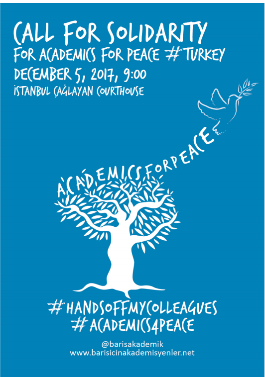 Call for Solidarity Actions for Academics for Peace from Turkey