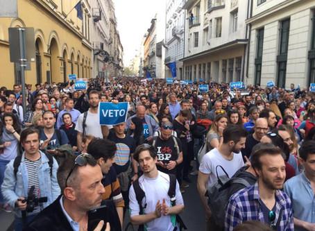University Program First Victim of Hungary AntiImmigration Tax