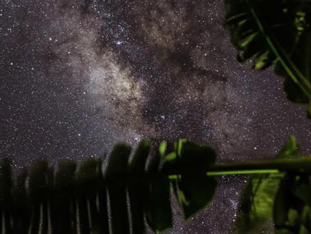 Soirées «astro»