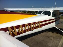 My private pilot trainer