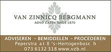 logo vzb.jpg
