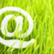 e-mail and fresh grass.jpg