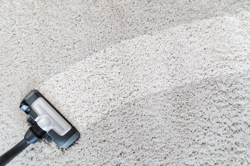 Floor And Carpet Cleaners