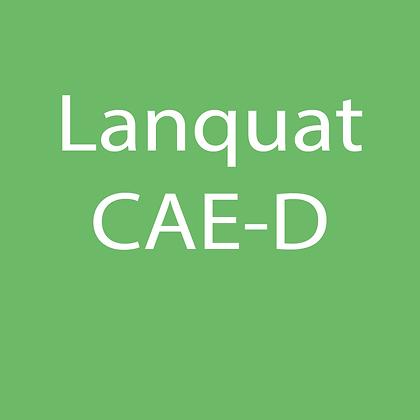 Lanquat CAE-D