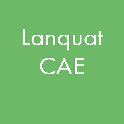 Lanquat CAE