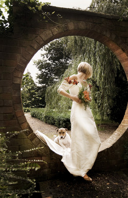 Wedding The wedding dress