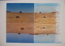 outback collage 5