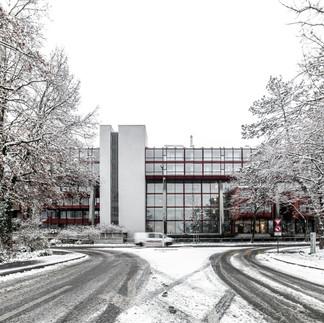 Egghölzli-Winterwonderland-3.jpg
