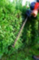 Urejanje okolice, Palček vrtnarske storitve