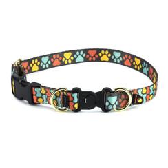 Petsafe Collar.jpg