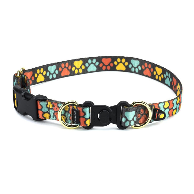 Petsafe Collar.jpg