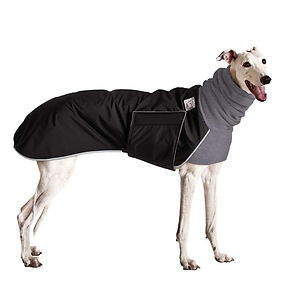Greyhound Jacket.jpg