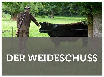Baumbachhof Weideschuss
