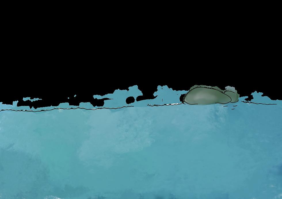 Wasser.png