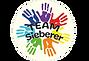 Logo-TEAM-Sieberer-transparent.png