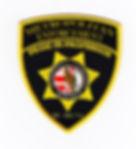 MEA SECURITY patch.jpg