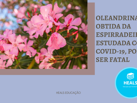 OLEANDRINA, OBTIDA DA ESPIRRADEIRA, ESTUDADA CONTRA COVID-19, PODE SER FATAL.
