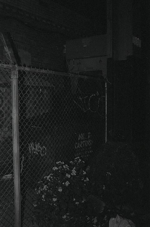 nocturne-4.jpg