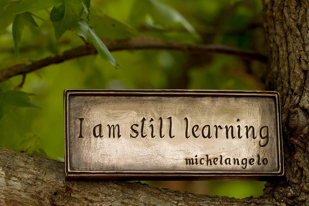 Still learning, Michelangelo | (3i) maintaining balance