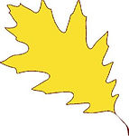 yellowleafpic.jpg