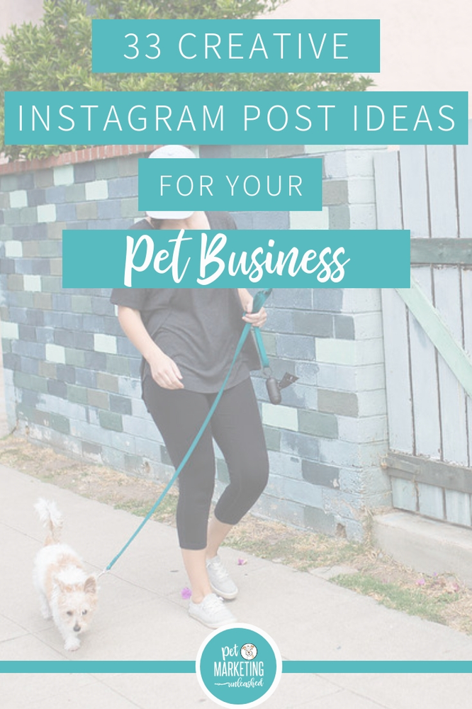 33 Creative Instagram Post Ideas for Your Pet Business