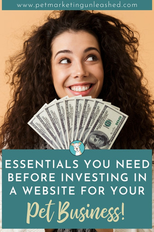 Essentials You Need Before Investing in a Website for Your Pet Business