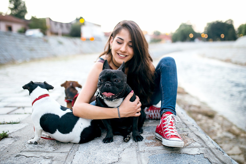 10 Simple Ways To Market Your Dog Walking or Pet Sitting Business | Pet Marketing Unleashed