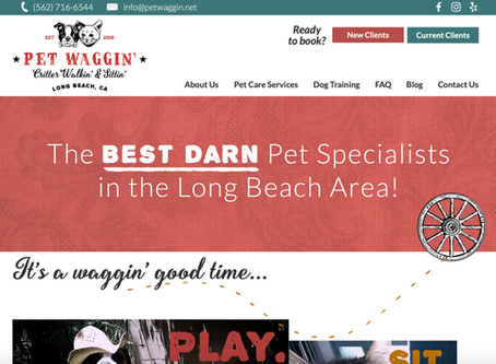 Introducing Pet Waggin's New Pet Care Software: How To Get Started!
