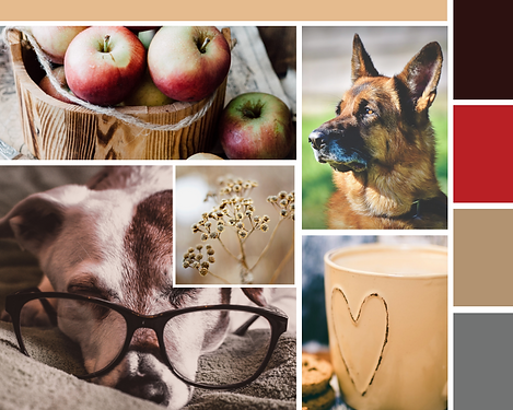smarty paws canine care mood board branding project