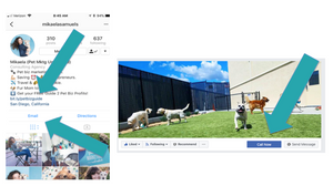 9 Quick + Easy Tips To Get More Pet Business Visibility Online | Pet Marketing Unleashed
