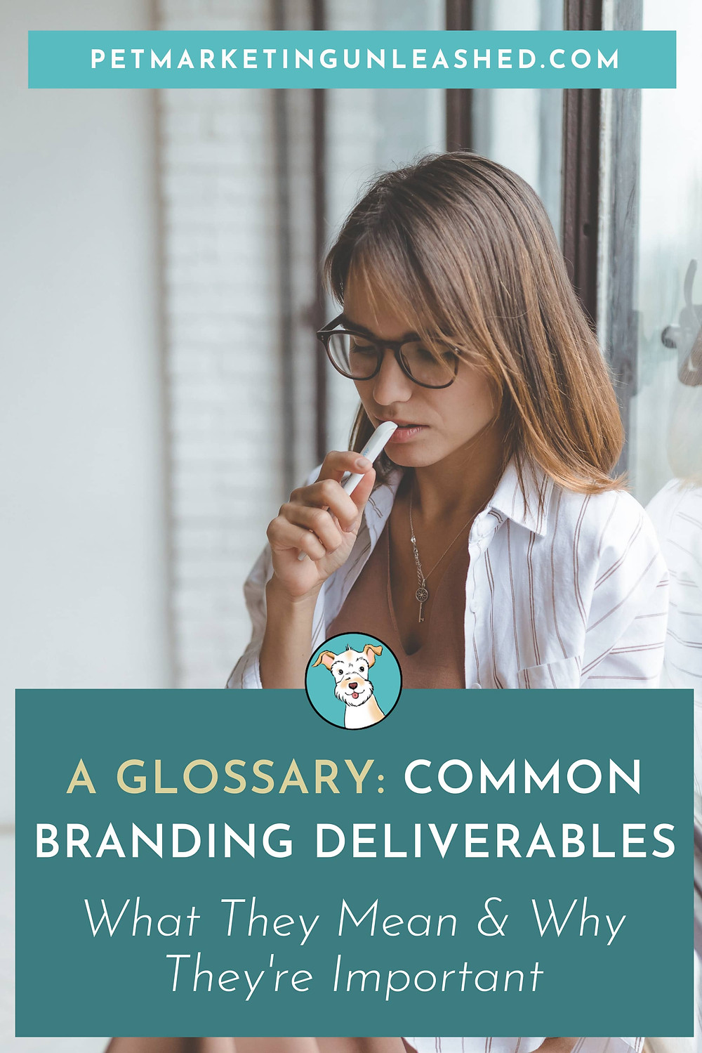 A Glossary - Common Branding Deliverables, What They Mean & Why They're Important with Pet Marketing Unleashed for Pet Businesses