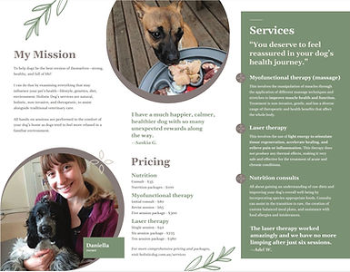 pet business brochure design for Holisti