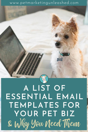 A List of Essential Email Templates For Your Pet Business & Why You Need Them