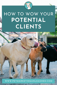 How To Wow Your Potential Clients | Pet Marketing Unleashed