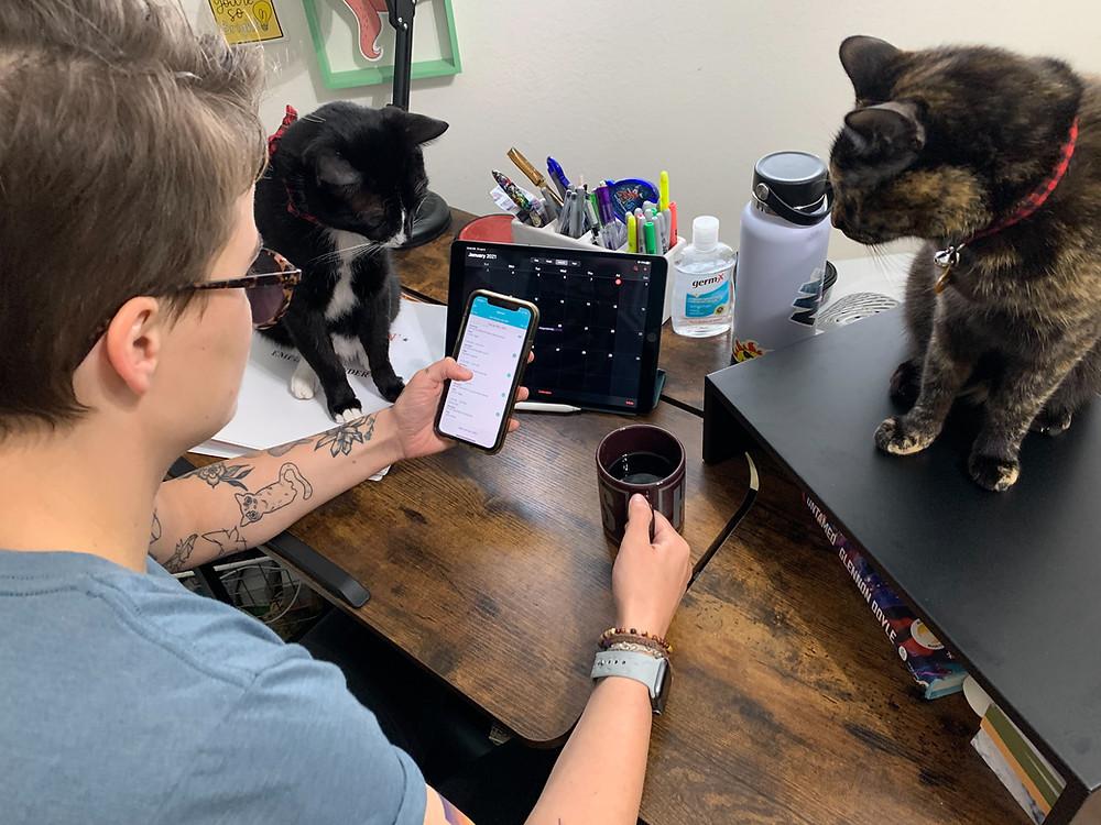 Pet Waggin' pet sitter schedule | Long Beach