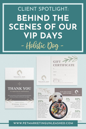 Behind the Scenes of Pet Marketing Unleashed VIP Days with Holistic Dog