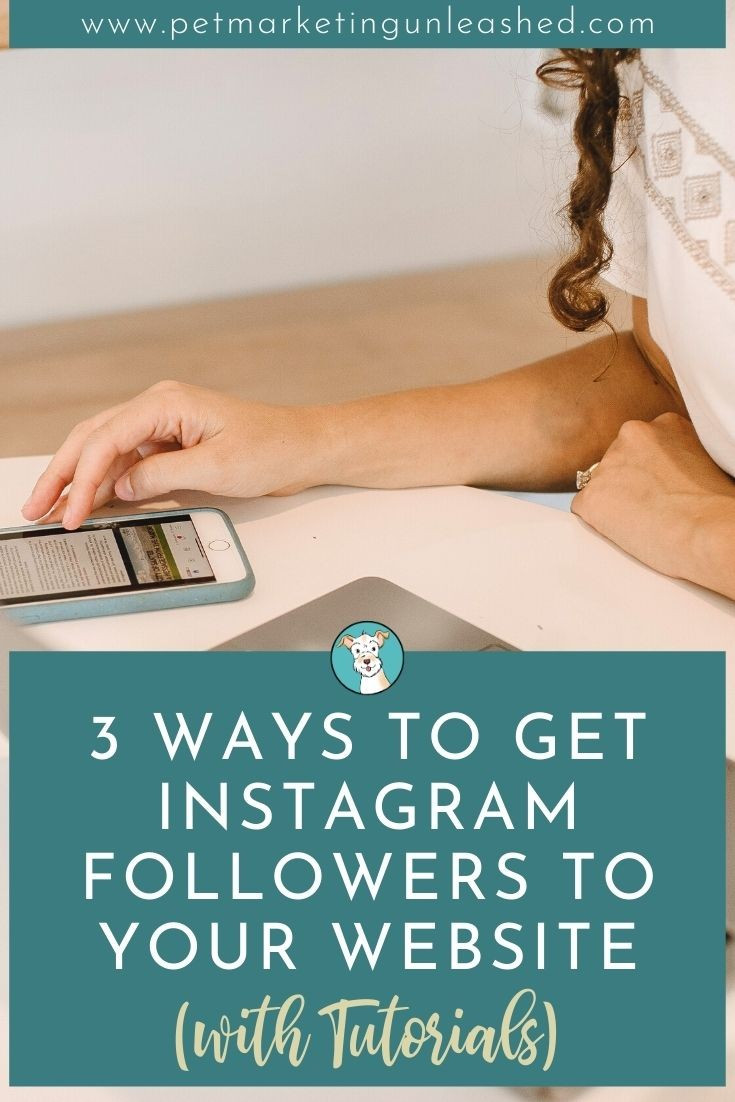3 Ways To Get Instagram Followers To Your Pet Business Website (with Tutorials) | Pet Marketing Unleashed