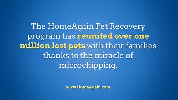 1M_Pets_Reunited.jpg