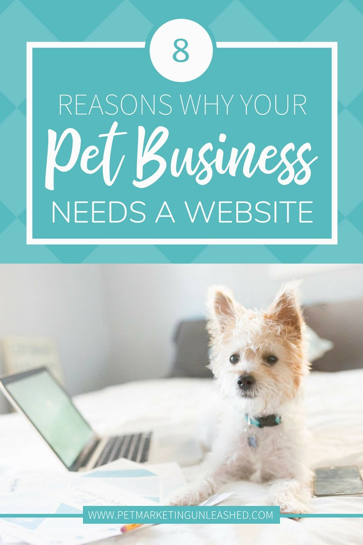 Do I need a website for my pet business? Pet Business Needs A Website | Pet Marketing Unleashed