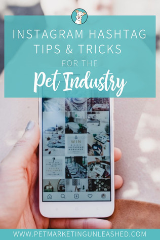 Instagram Hashtag Tips & Tricks For The Pet Industry
