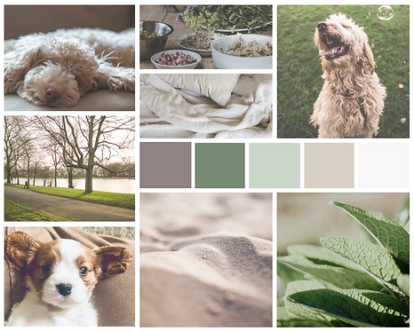 Holistic Dog Mood Board copy.png
